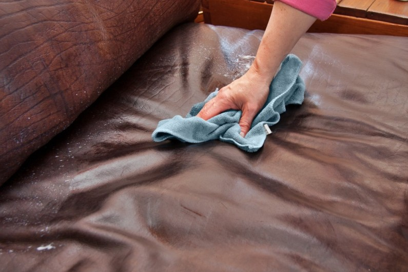 Furniture Upholstery Cleaning a Sofa