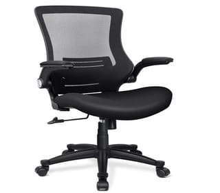 Funria Ergonomic Mesh Office Adjustable Swivel
